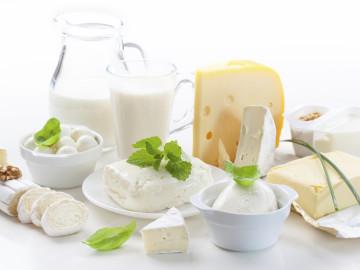 ¿Es necesario que sigamos consumiendo lácteos en edad adulta?