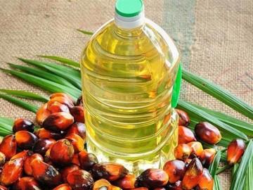Aceite de palma, ¿cómo afecta su consumo?